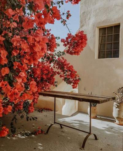 Source: https://weheartit.com/entry/320894051?context_page=8&context_query=greece+photography&context_type=search