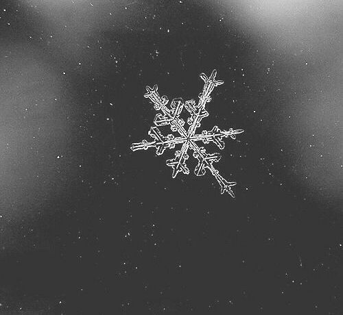 Source: https://weheartit.com/entry/324339316?context_page=3&context_query=snowflake+photography&context_type=search