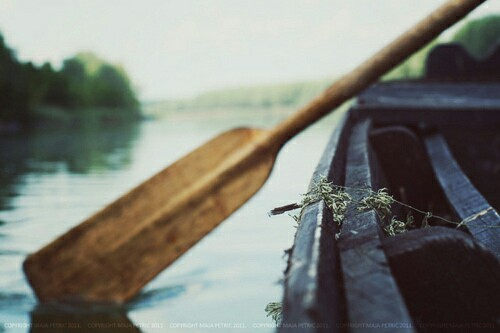 Source: https://weheartit.com/entry/266950858?context_page=4&context_query=fishing+photography&context_type=search
