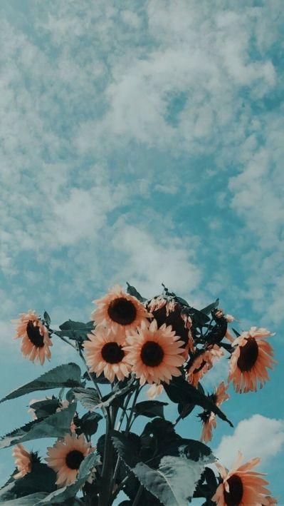 Source: https://weheartit.com/entry/327783531?context_query=clouds+photography&context_type=search
