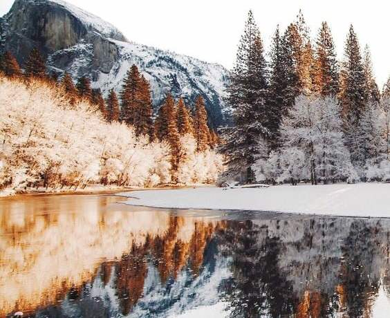 Source: https://weheartit.com/entry/328199590?context_page=3&context_query=winter+photography&context_type=search