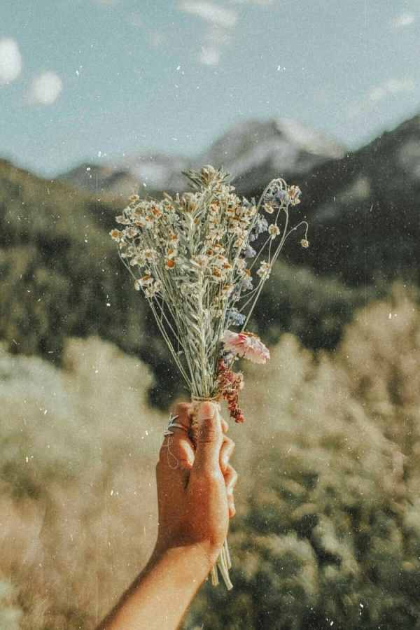 Source: https://weheartit.com/entry/326090968?context_page=5&context_query=bouquet+photography&context_type=search