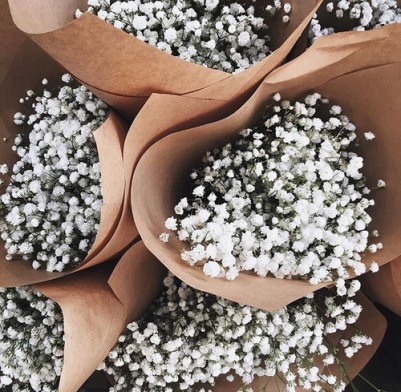 Source: https://weheartit.com/entry/278863964?context_page=7&context_query=small+white+flower&context_type=search