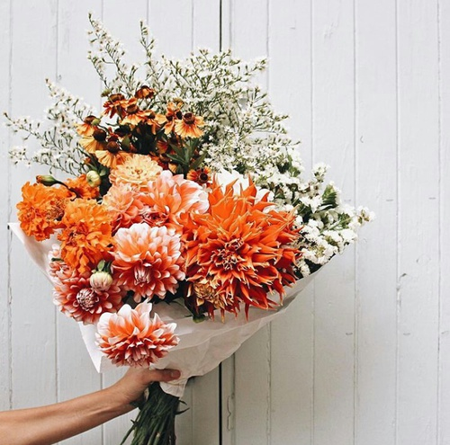 Source: https://weheartit.com/entry/250684855?context_query=picked+flowers&context_type=search