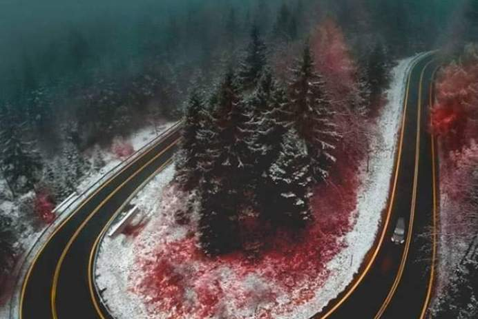 Source: https://weheartit.com/entry/313619453?context_page=6&context_query=blood+photography&context_type=search