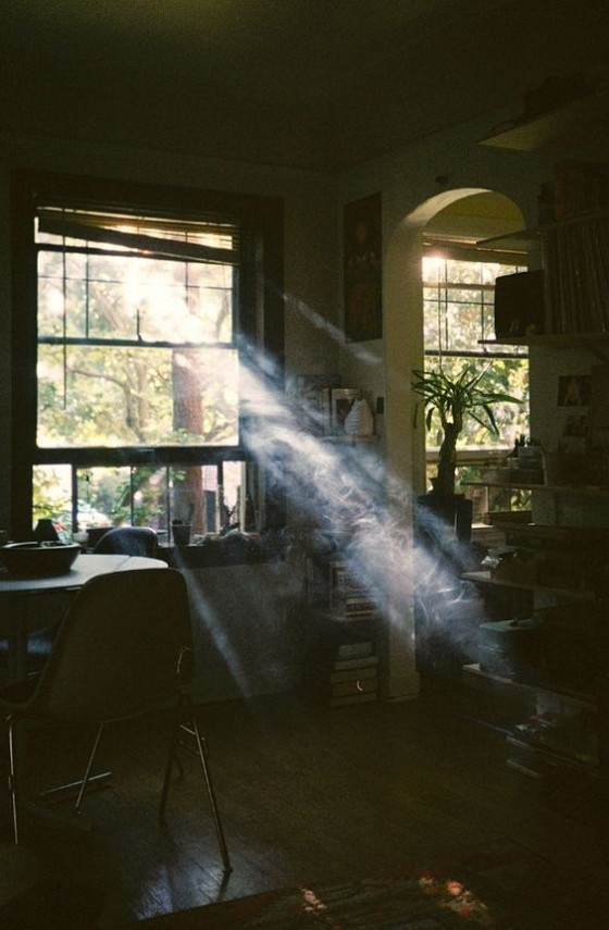 Source: https://weheartit.com/entry/330238415?context_query=sun+rays&context_type=search