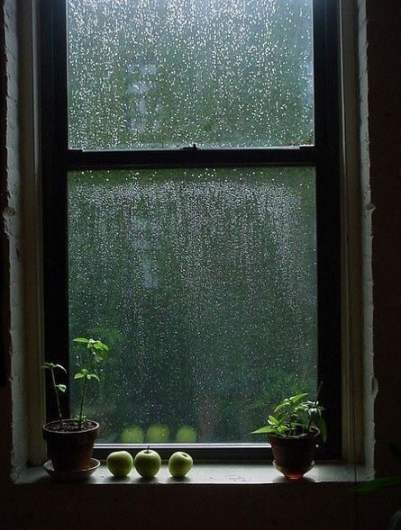 Source: https://weheartit.com/entry/329030720?context_page=4&context_query=rain+photography&context_type=search