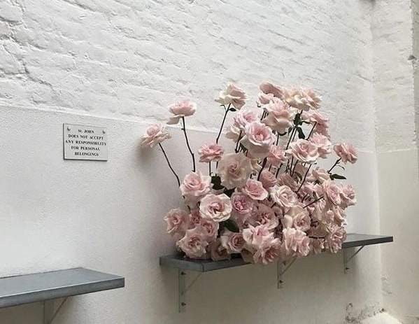 Sourc: https://weheartit.com/entry/332366820?context_page=2&context_query=pastel+pink+flower&context_type=search