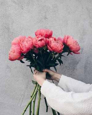 Source: https://weheartit.com/entry/331467118?context_page=3&context_query=peony+bouquet&context_type=search